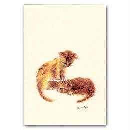 猫ポストカード24