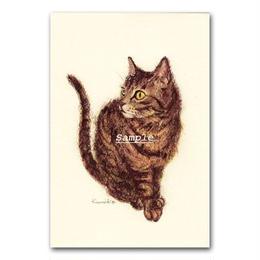 猫ポストカード8