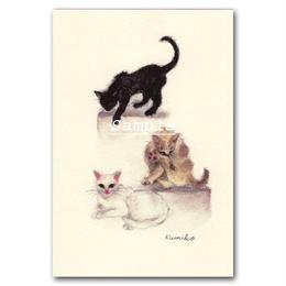 猫ポストカード29