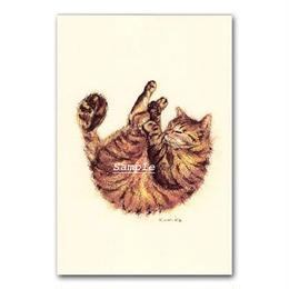 猫ポストカード18