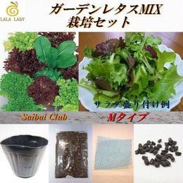栽培クラブ ガーデンレタスミックス(5種類)栽培セット Mサイズ 種 野菜 ベジタブル サラダ V-300