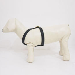 MAX BONE Jewel Leather Harness