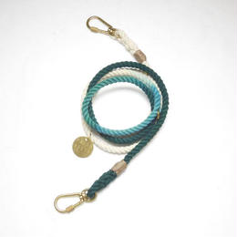 Found My Animal ADJUSTABLE DOG LEASH(TEAL OMBRE NEW)