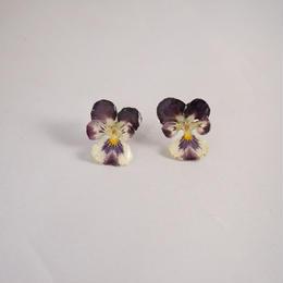 ビオラピアス(purple×white03)