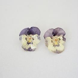 ビオラピアス(purple×white02)