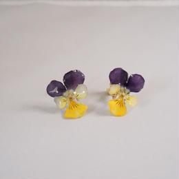 ビオライヤリング(purple×yellow03)