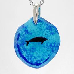 ハンドウイルカ(dolphin385)