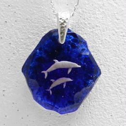 ハンドウイルカ(dolphin322)