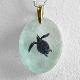 turtle134–穏やかな日々–