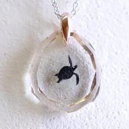 アオウミガメ(turtle137)
