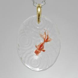 オランダシシガシラ(goldfish059)