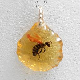 ニホンミツバチ(bee005)