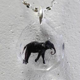 インドゾウ(elephant026)