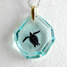 アオウミガメ(turtle140)