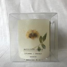 Flower / Pansy