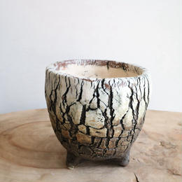 Pottery  by  Wood   no.009  φ11cm   タイポット