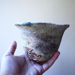 安西桂 〝土の子″ 鉢   no.111812
