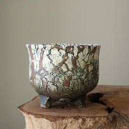 Pottery  by  Wood   no.41009  φ12.5cm  タイポット