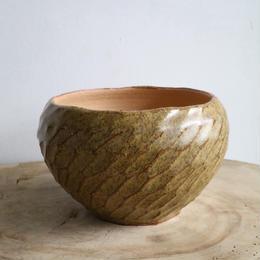 NEOSHIHO   no.017    ハチノス   植木鉢    φ13cm