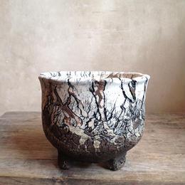 Pot  by  Wood   no.42009  φ12.5cm  タイポット