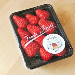 お得な3パックset【超貴重】農薬・肥料不使用 自然栽培イチゴ「きぼうのいちご」