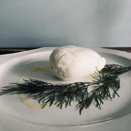 set mozzarella+レモンオリーブオイルorオレンジオリーヴオイル