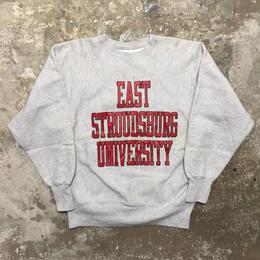 90's Champion REVERSE WEAVE Sweat Shirt E.S.U