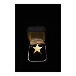star dot _ two tone color  pierce/earring