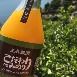 【ネーブル】こだわりのみのり100%果汁しぼり (12本入り)無添加