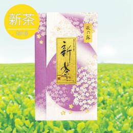 煎茶「萩の露」