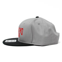 UNOFFICIALOKINAWAMADE™CAP(BLACKGRAY)