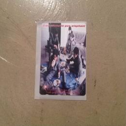 TMGE 1st album  [ cult  grass  stars ]      Telephone Card