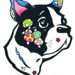 【PoPun.P】ポストカード 犬 S48-317