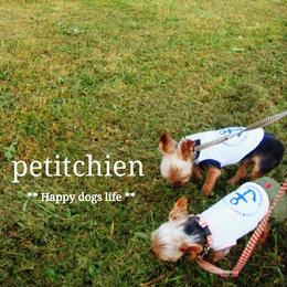 ★ 犬服雑貨petitchien  ★【Information】