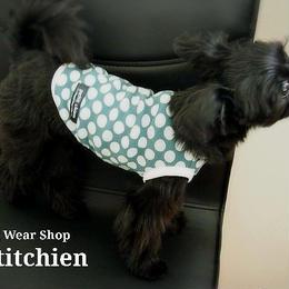 犬服★完成品【ヴィヴィ水玉】 胴まわり30cm