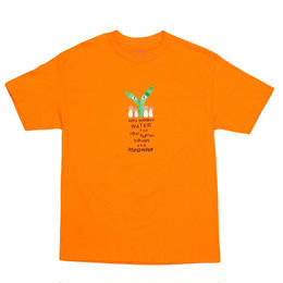"Stingwater ORANGE T-SHIRT ""GROE TOGETHER: BROWN CAP"""