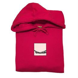 IGGY FOCUS GROUP hoody Red