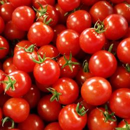 キャロル10(赤) 1kg 9~10月限定