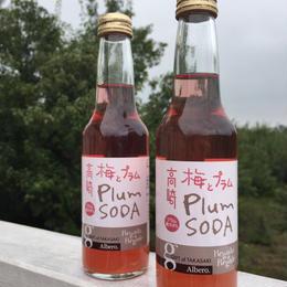 高崎 梅とプラムのソーダ
