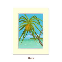 ヒロクメアート 2Lマットスタンド ハワイアンの生活や文化に欠かせない植物ハラ。『Hala ハラ』。HK008F