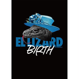 "visualreports ""EL LIZARD"" poster"