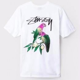 STUSSY Parrots Tee-WHITE