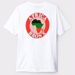 STUSSY AFRICA BRONX TEE-WHITE