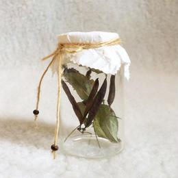 Dried Flower Deco-G