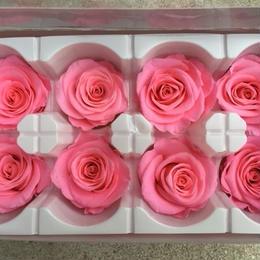 薔薇 濃いピンク 1箱8輪入り (着払い)