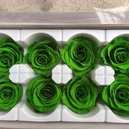 薔薇 グリーン 1箱8輪入り (着払い)