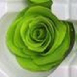 薔薇 ライトグリーン 1輪から (着払い)