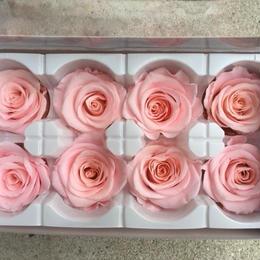 薔薇 ミルキーピンク 1箱8輪入り (着払い)