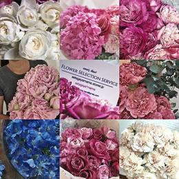nana's Flower Selection 市場から直お届け エリア限定サービス リクエストフォーム