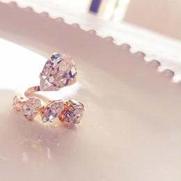 5 bijou ring b2